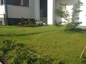 Entretien des espaces verts et tonte de l'herbe